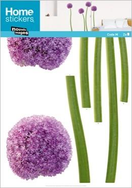 nouvelles-images-stickers-da-parete-fiore-tondo.jpg