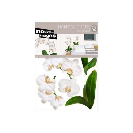 nouvelles-images-stickers-da-parete-orchidea.jpg