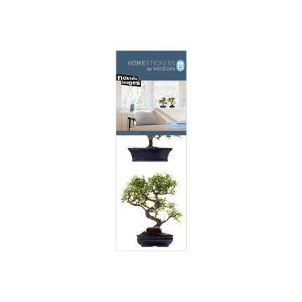 nouvelles-images-stickers-per-vetri-bonsai.jpg